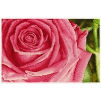 Rose Counted Cross Stitch Kit